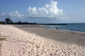 buy a hutchinson island oceanfront condo